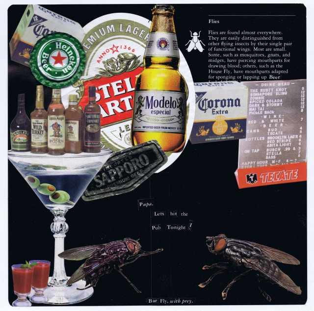 bar fly with prey, collage by katie blake nov 2010